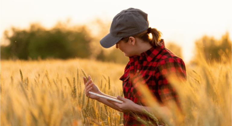 Como a Internet das Coisas pode transformar a zona rural!